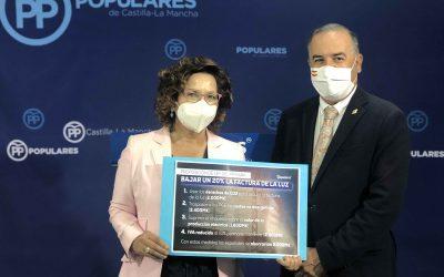 Los parlamentarios del PP exigen a Sánchez que baje el recibo de la luz a 50.000 consumidores talaveranos y a 400.000 de la provincia